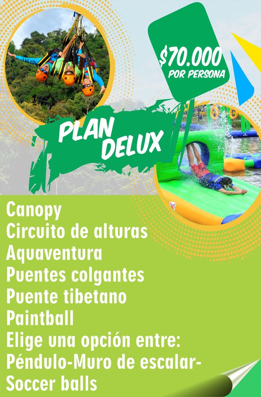 Plan Deluxe