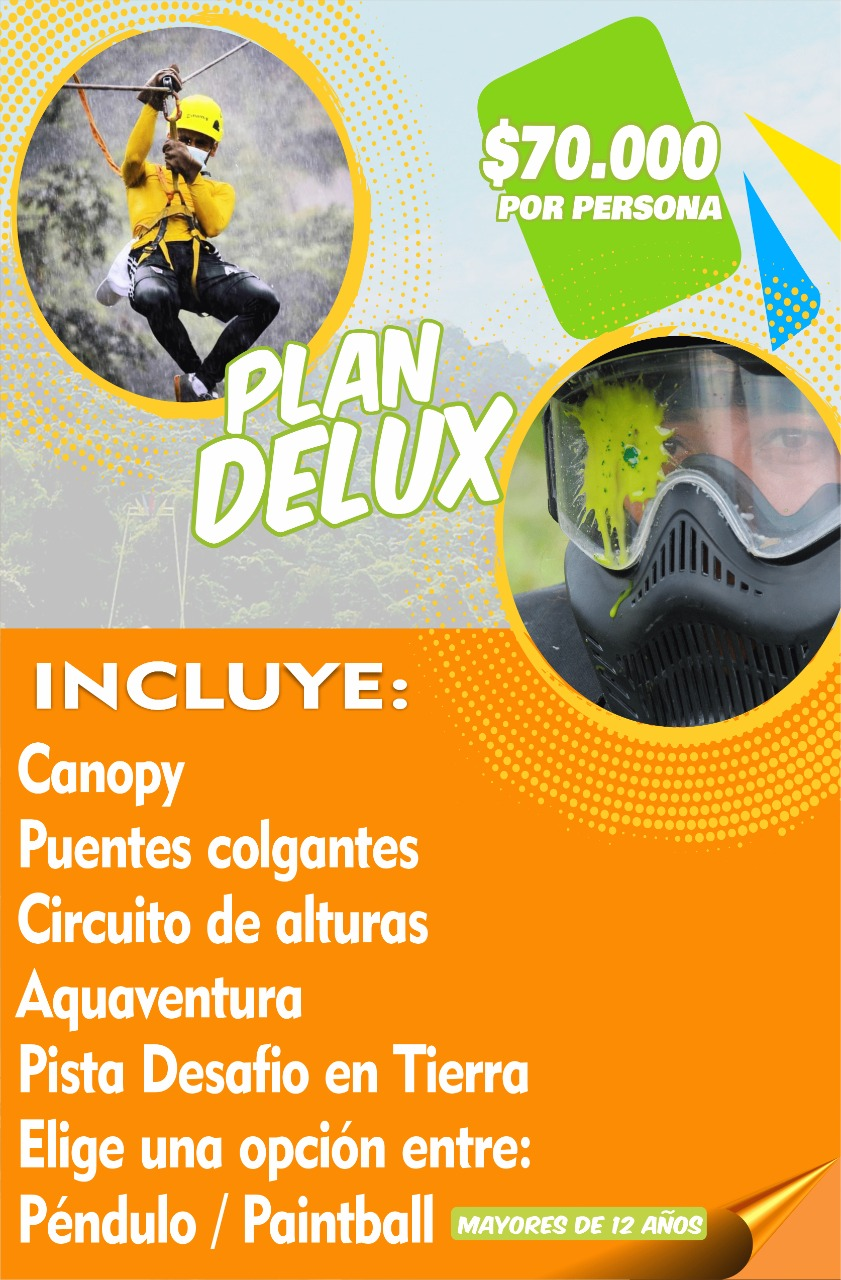 Plan Delux
